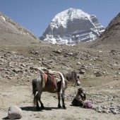 Mt. Kailash Trek via Simikot (Humla) 16 days - Trekking